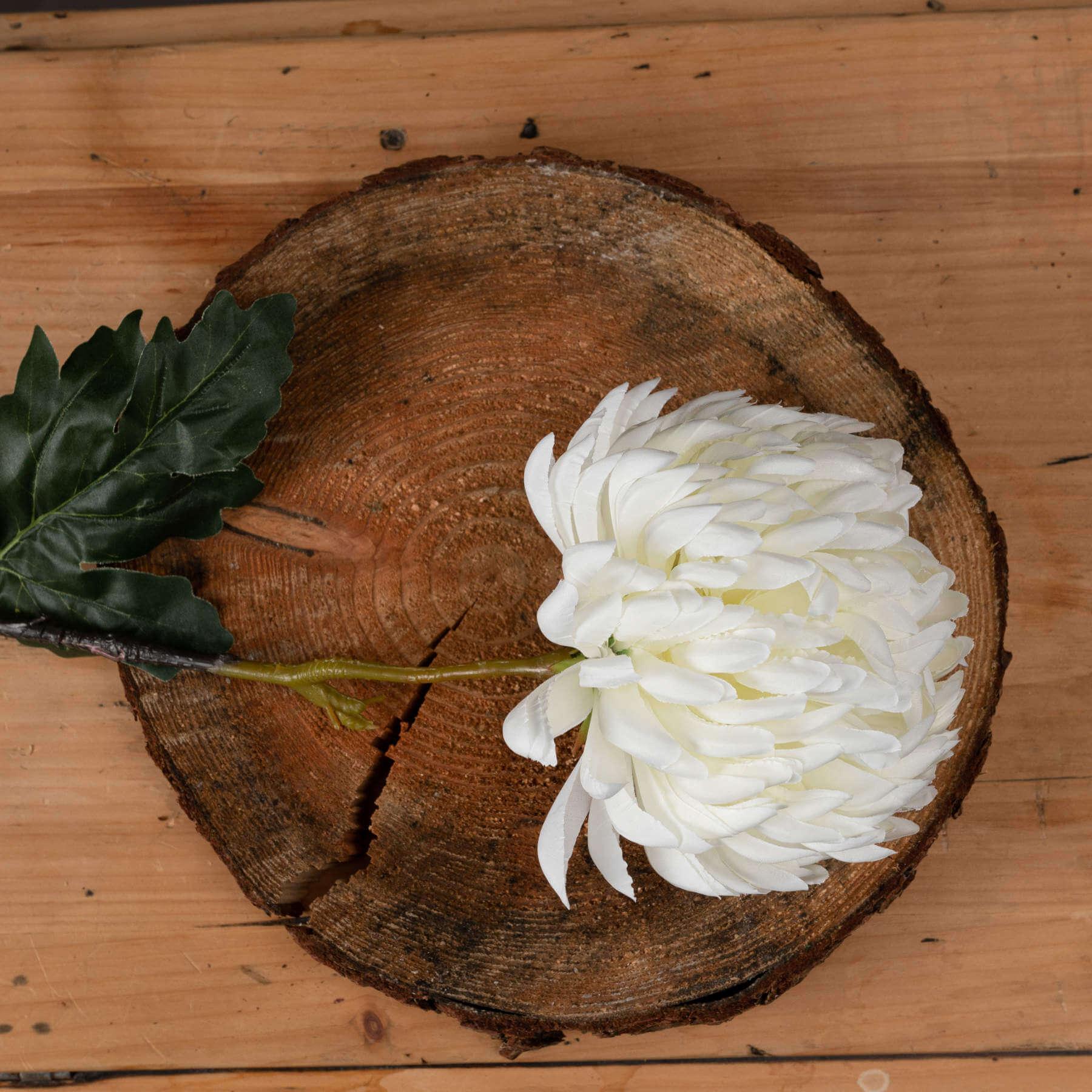 Large White Chrysanthemum