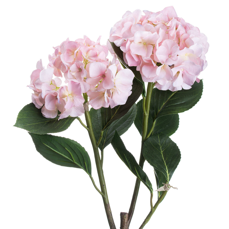 Pale Pink Oversized Hydrangea Spray