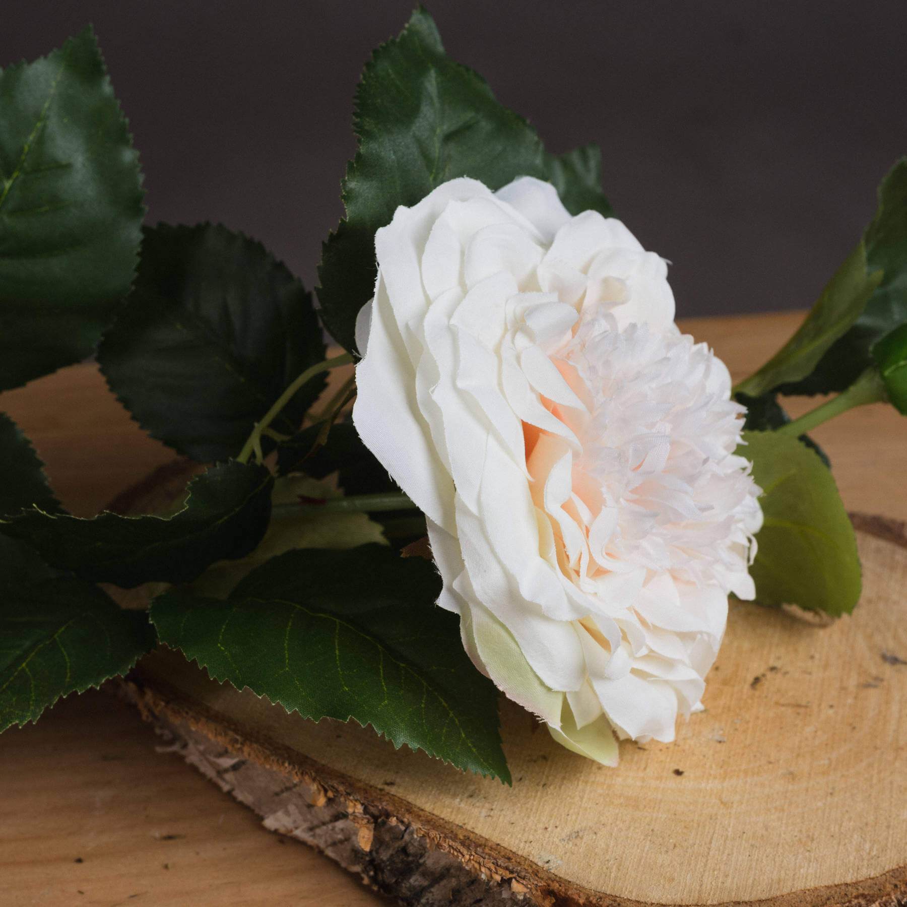 White Garden Rose Spray