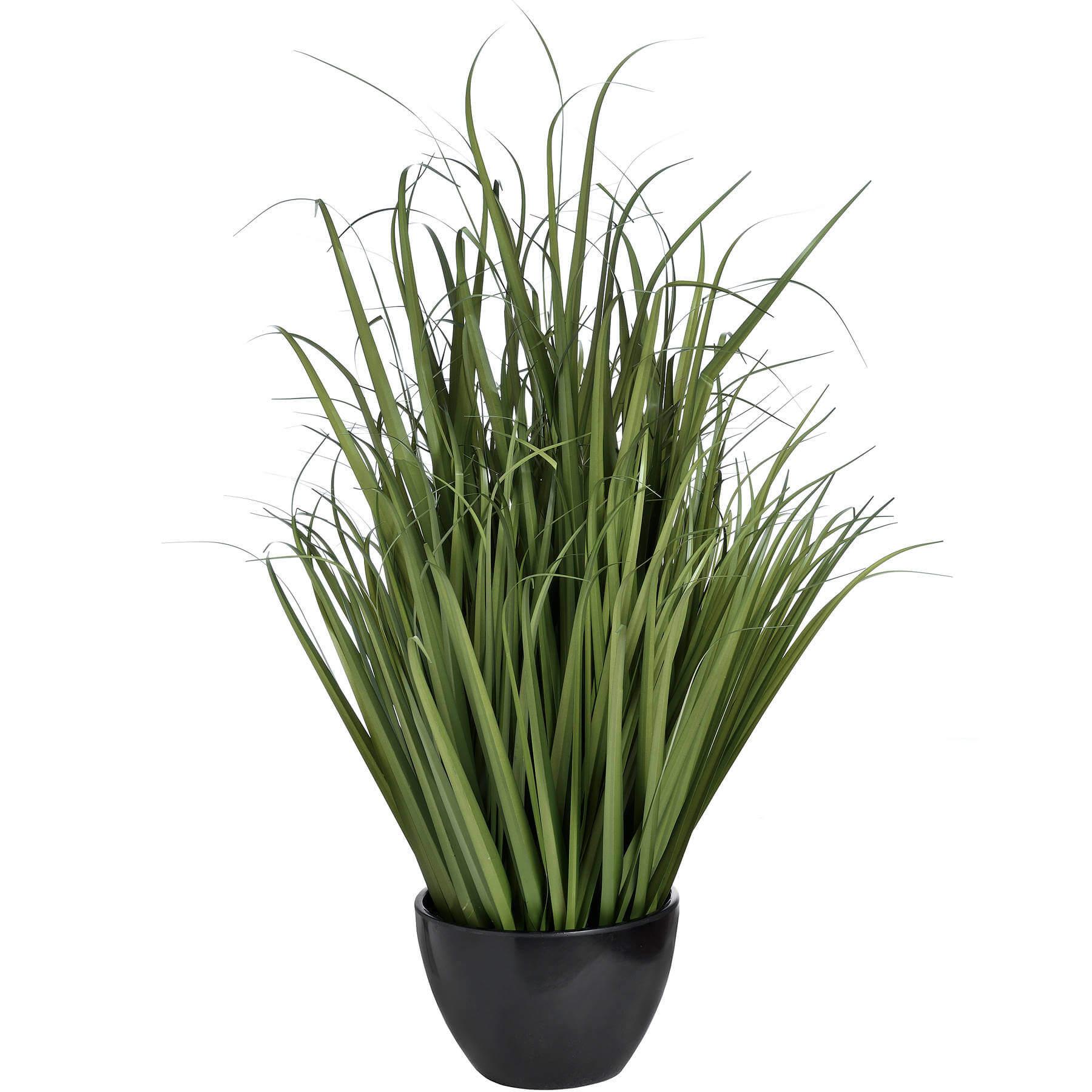 Large Field Grass pot