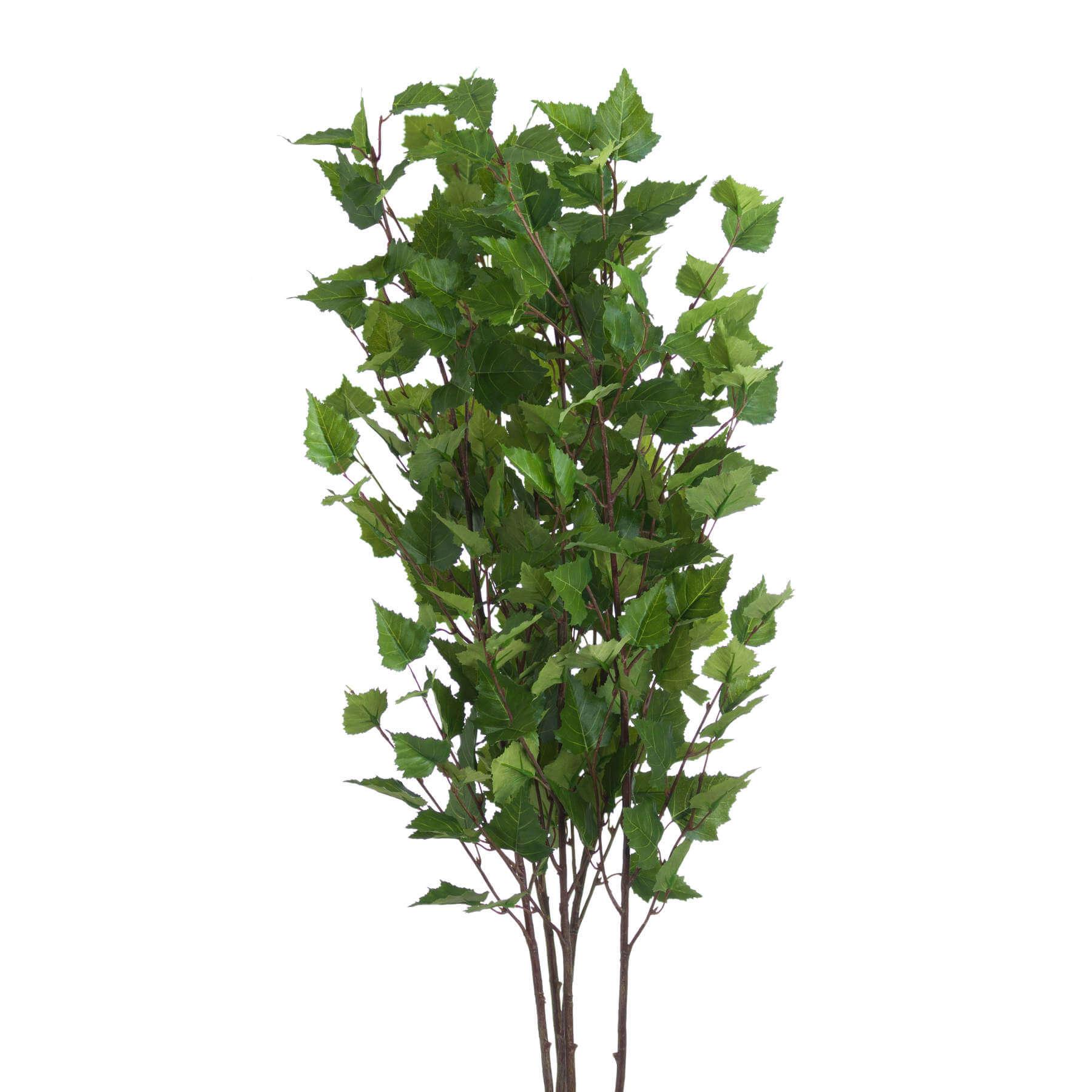 Green Branch Spray