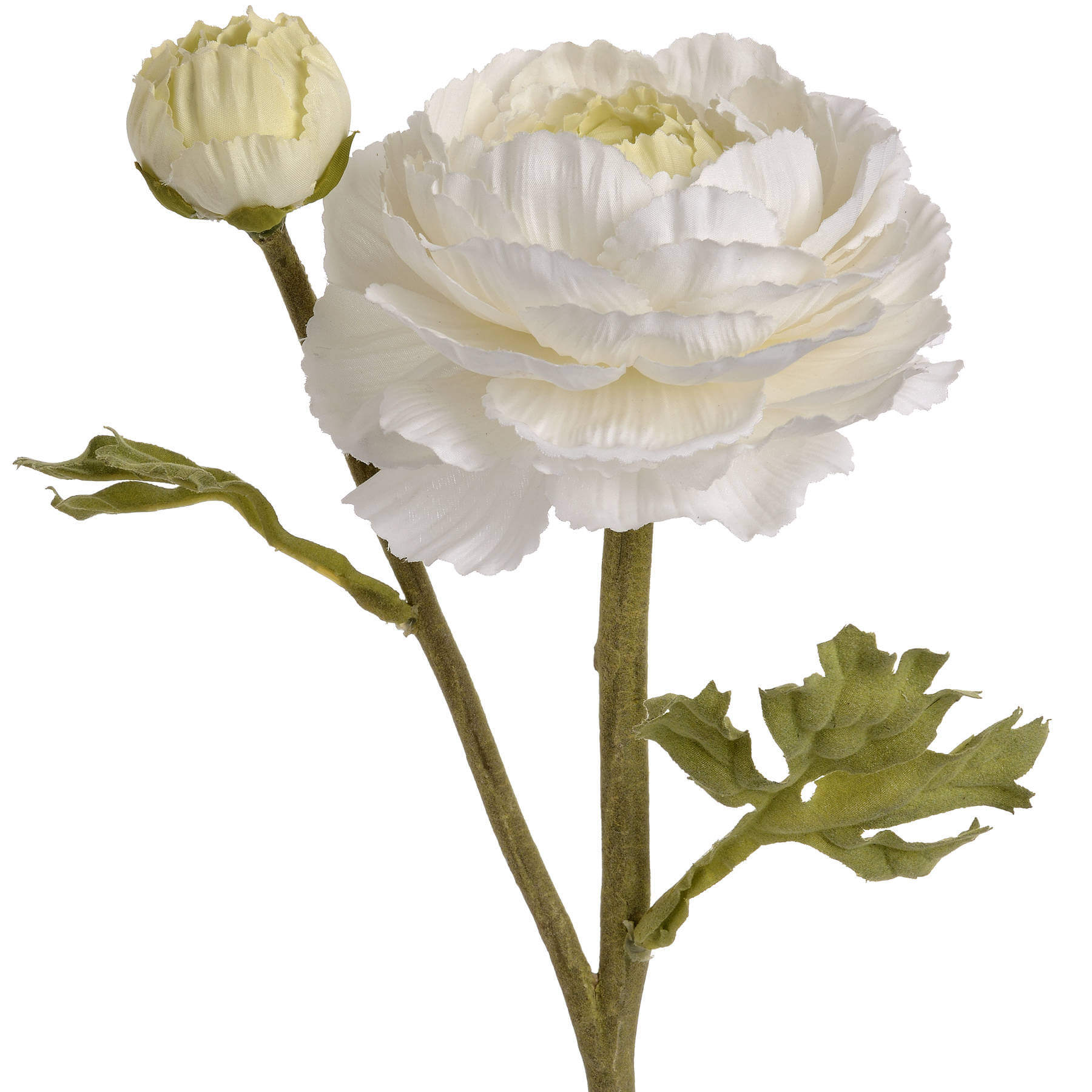 White Ranunculus Spray