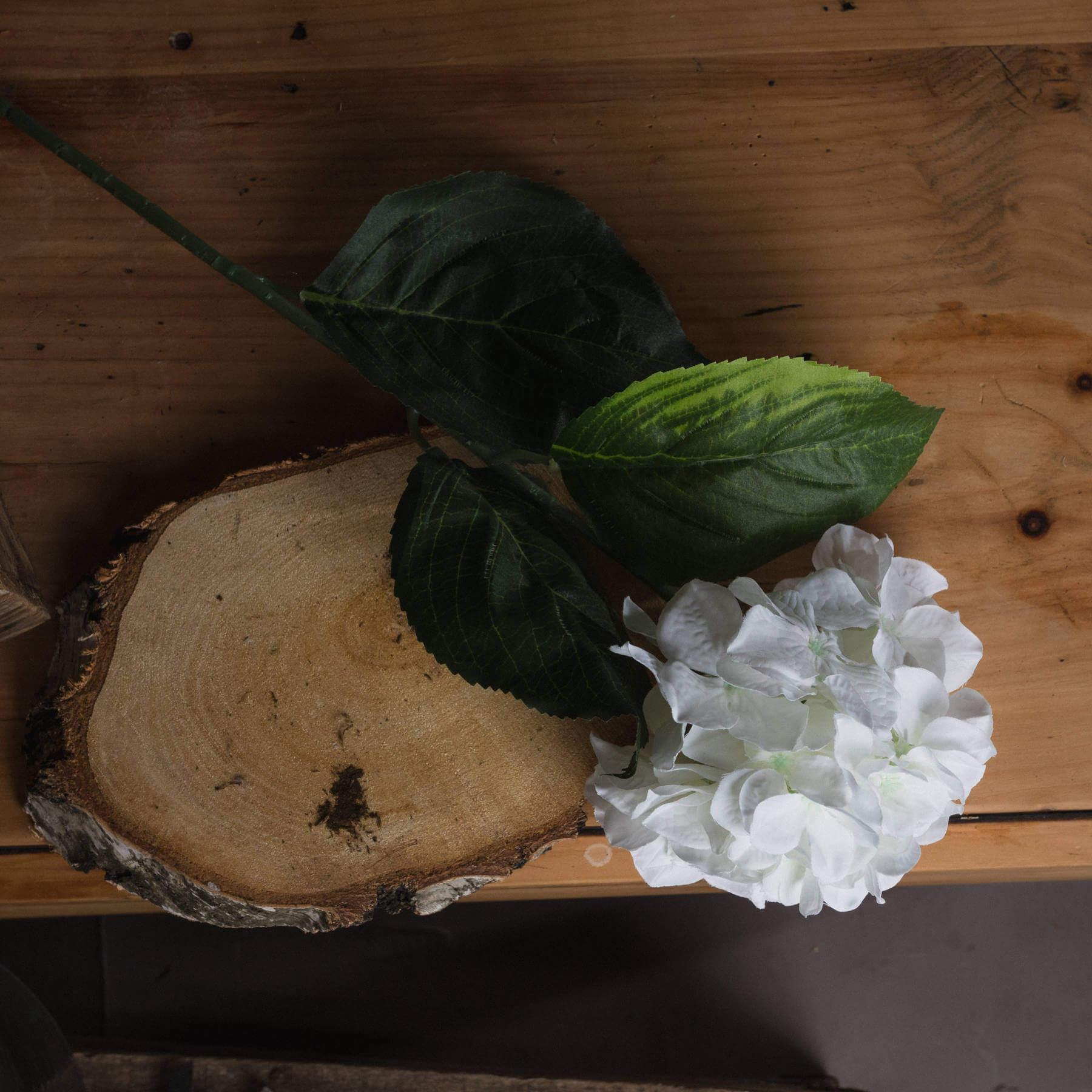White Small Head Hydrangea