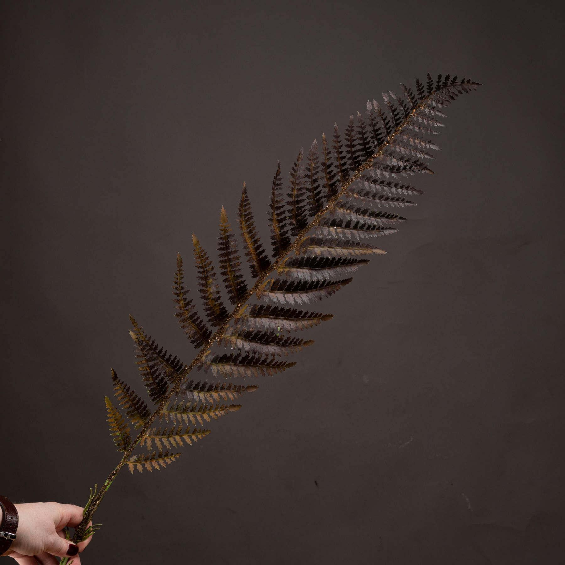 Single Brown Fern Leaf