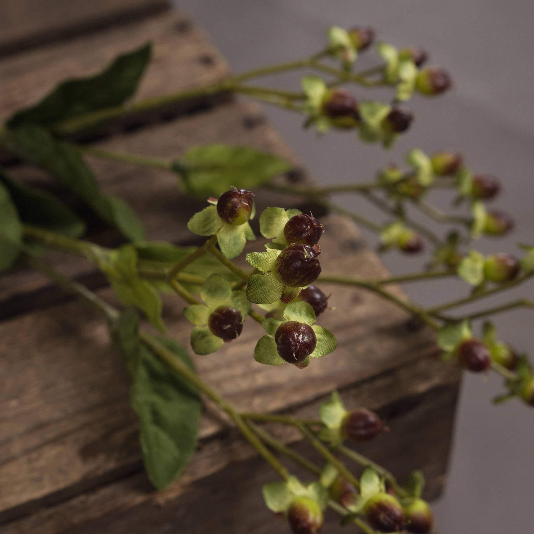 Brown Hypericum Berry Spray