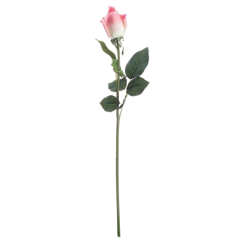 Pink Closed Rose Bud