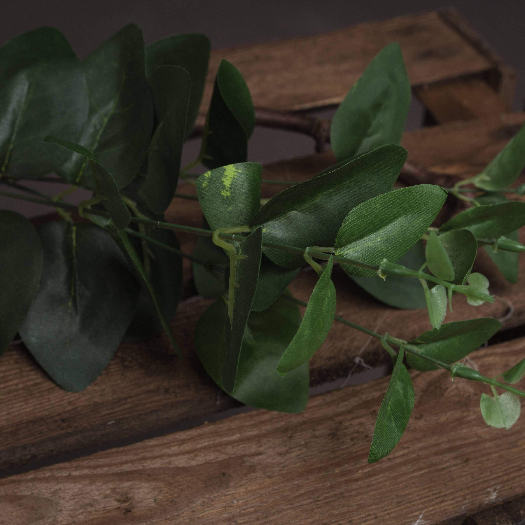 Cineraria Eucalyptus Spray