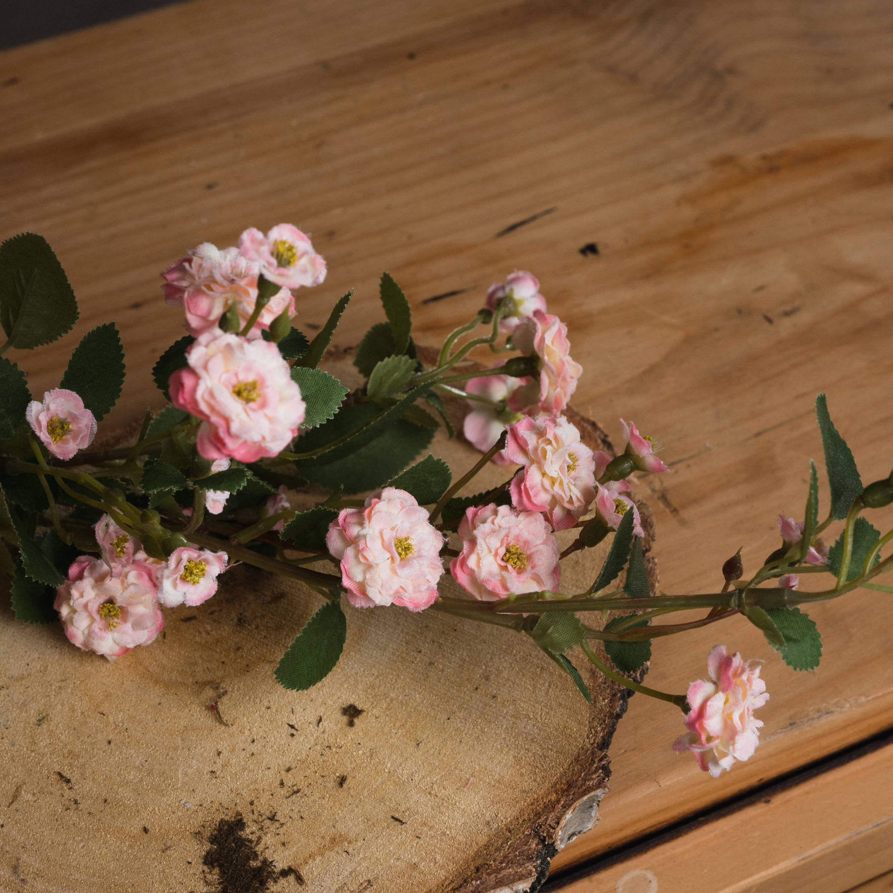 Pink Wild Meadow Rose