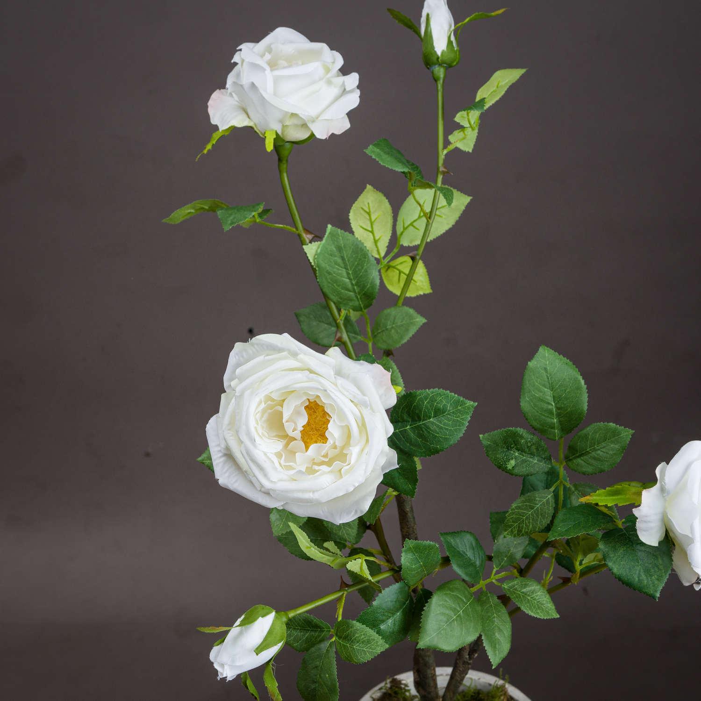 Classic White Garden Rose Spray