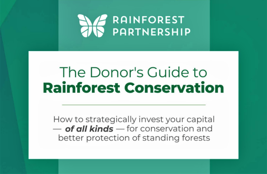 Part three of spotting real impact in rainforest protection: how money is used (or not used) for rainforest conservation