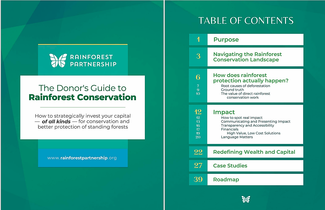 Donor's Guide to Rainforest Conservation: Investing for impact