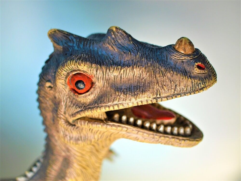 Close up shot on face of dinosaur toy