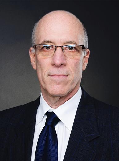 mark feldstein, chartered accoutant