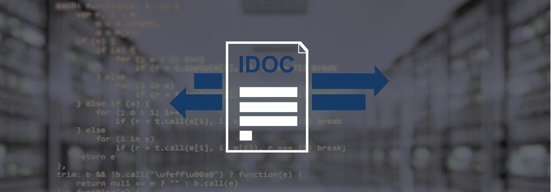 Programmierskript mit Icon eines IDOC im Vordergrund