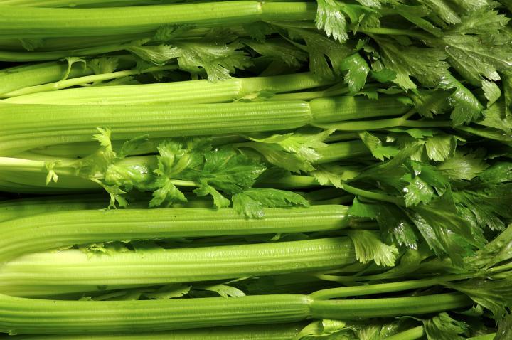 Celery NZ -  large bunch