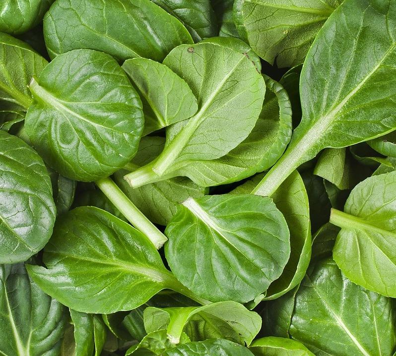 Baby Spinach -300g (Pukekohe)