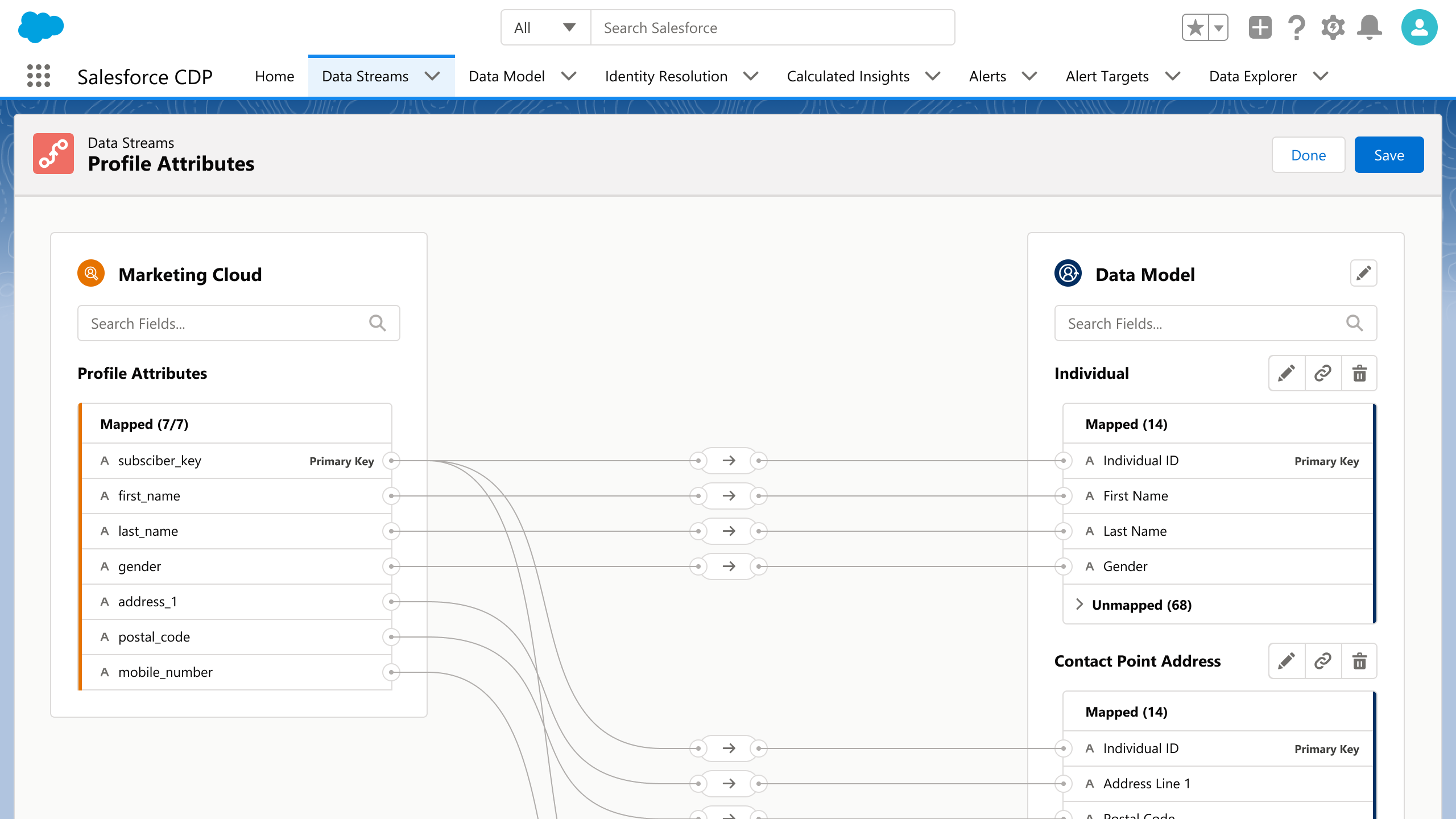 Salesforce CDP - Data Streams and Mapping