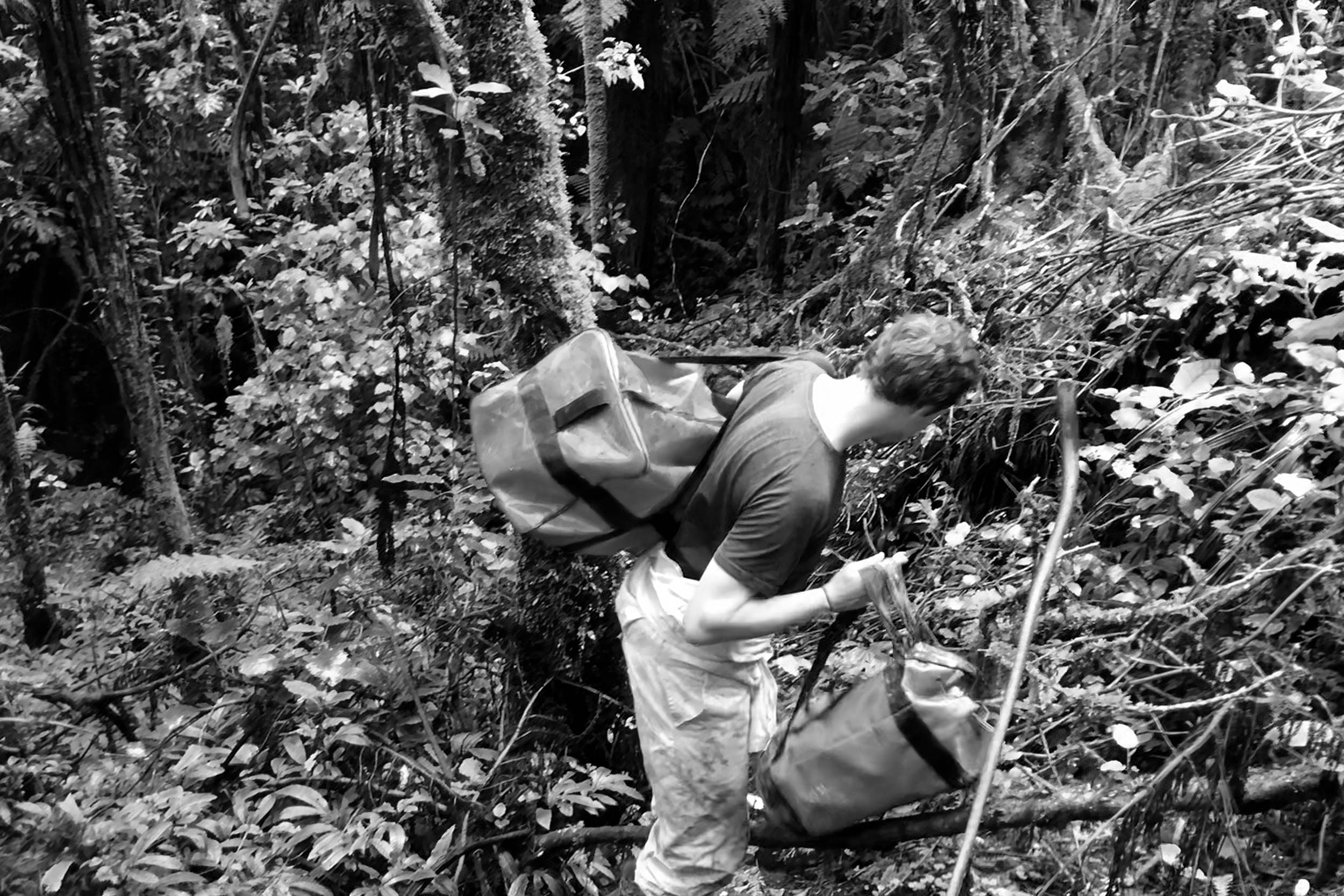 Field scientist carrying Syp autosampler device through forest in carry bags.
