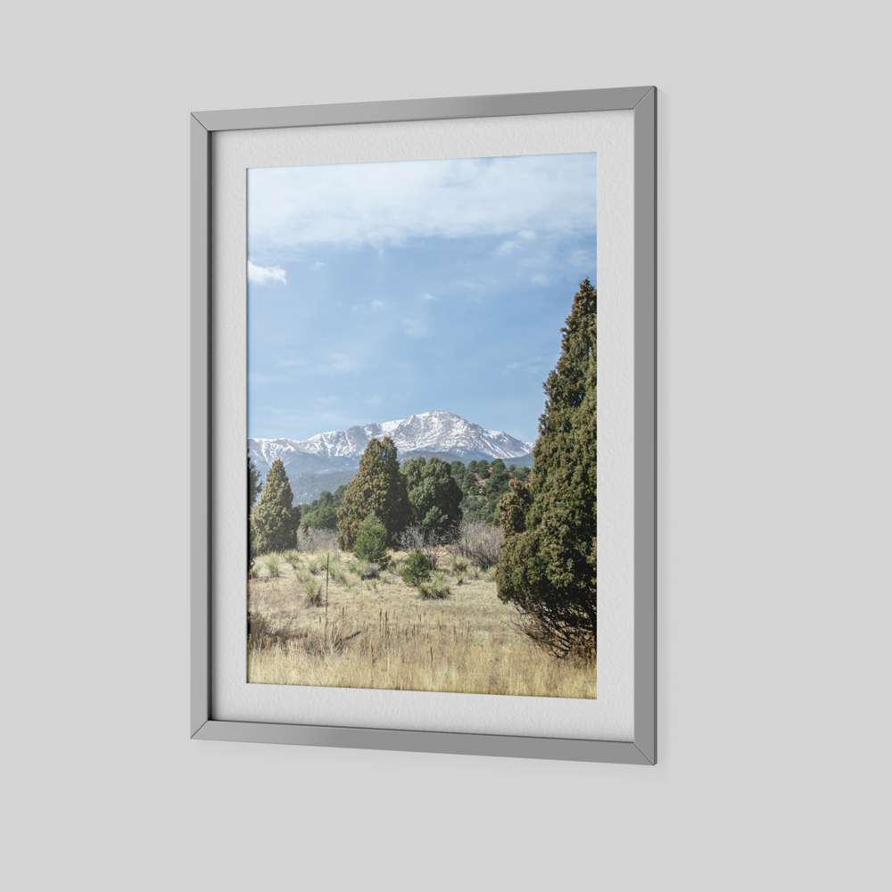 Large photo of trees with a mountain in the background.