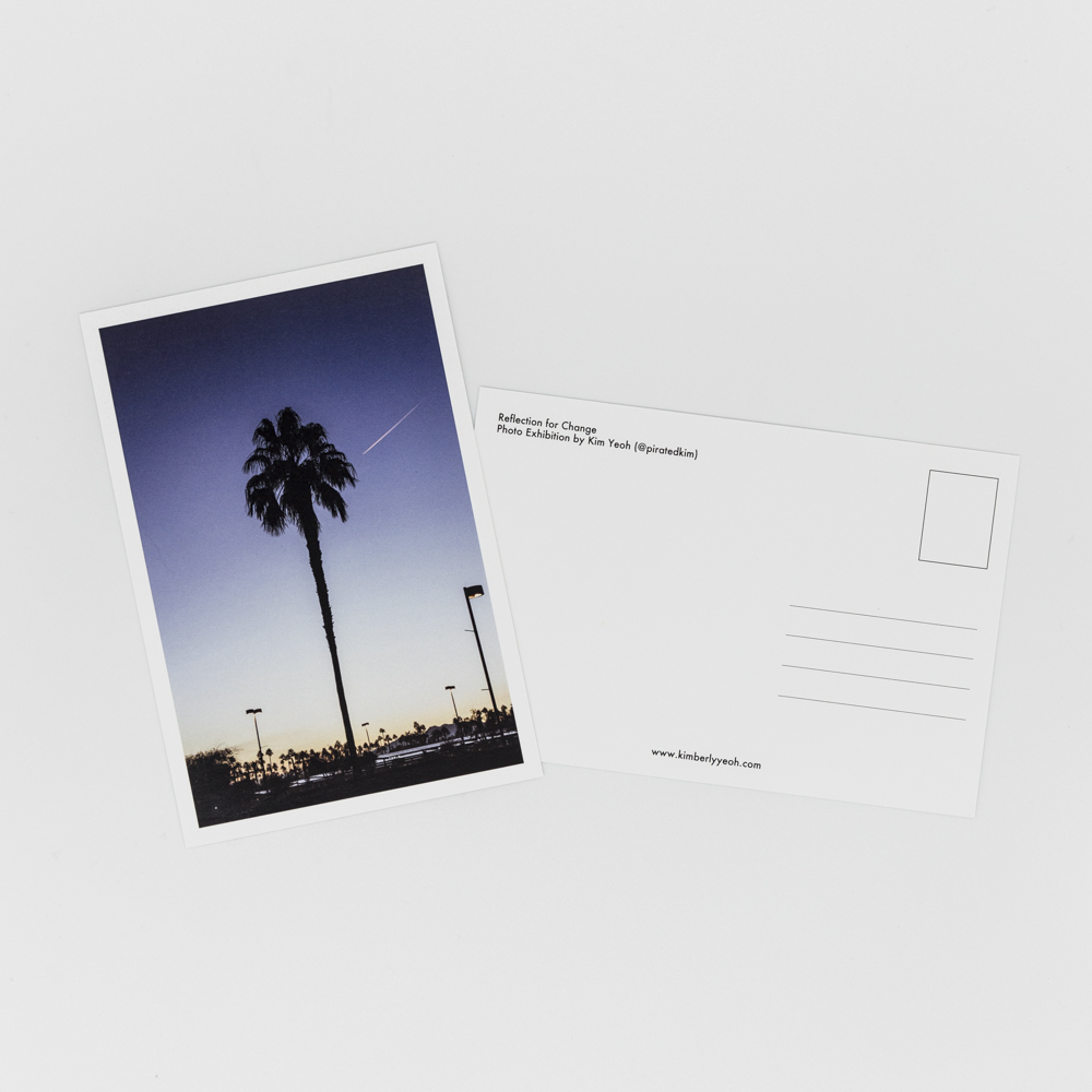 Postcard featuring an image of a palm tree.