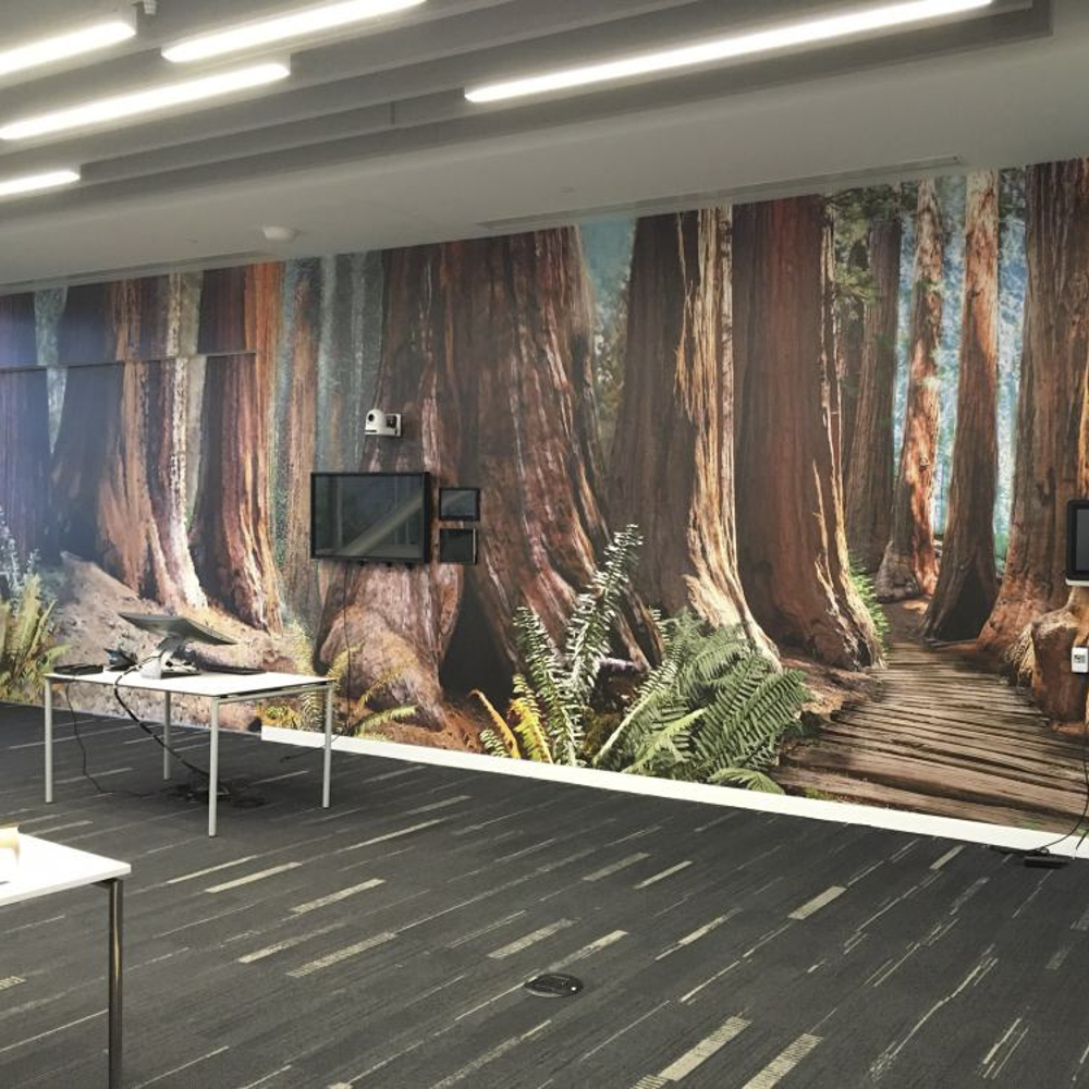 Indoor wall graphics displaying tree trunks.
