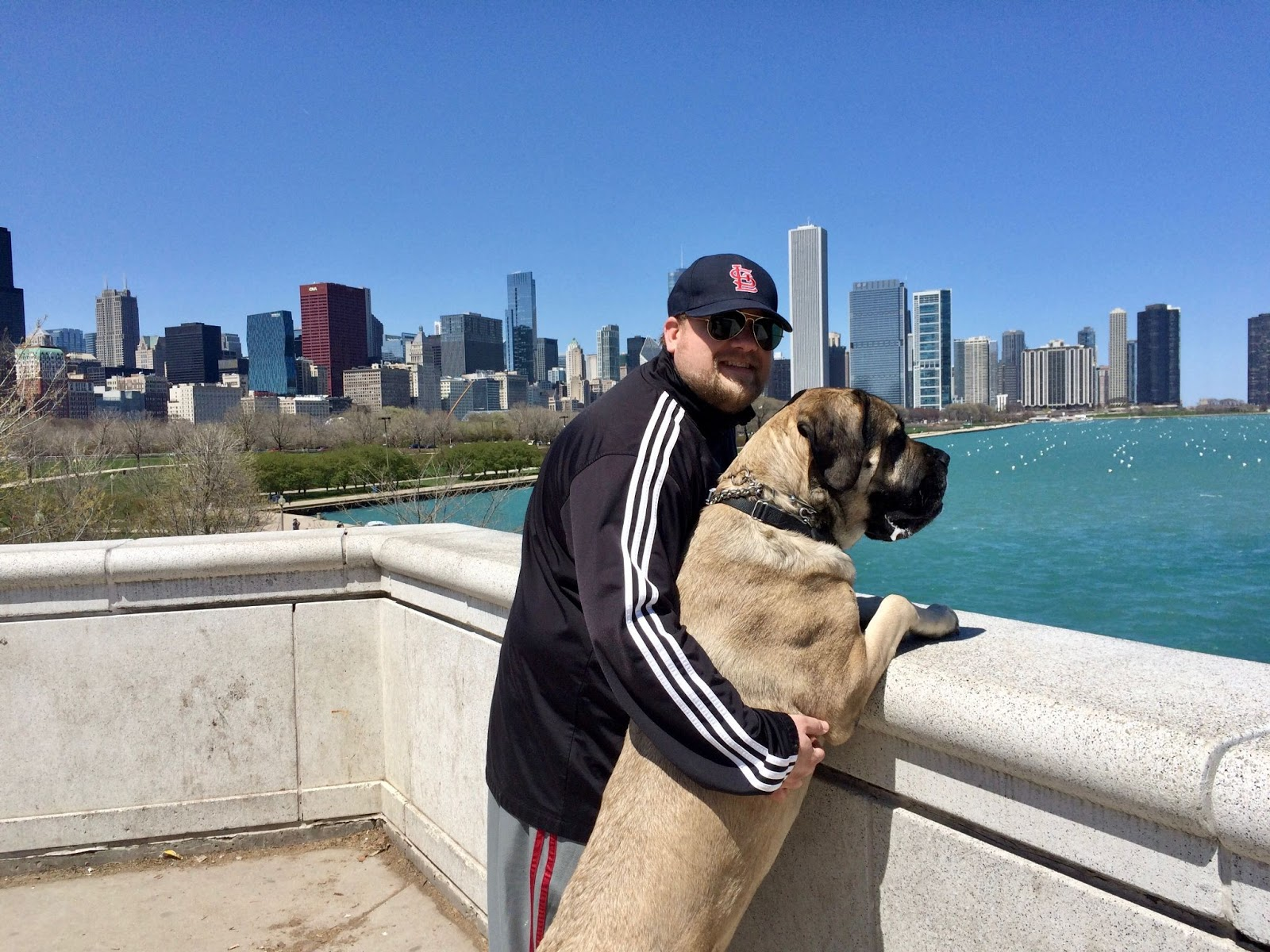 Micah with large dog in front of Chicago skyline.