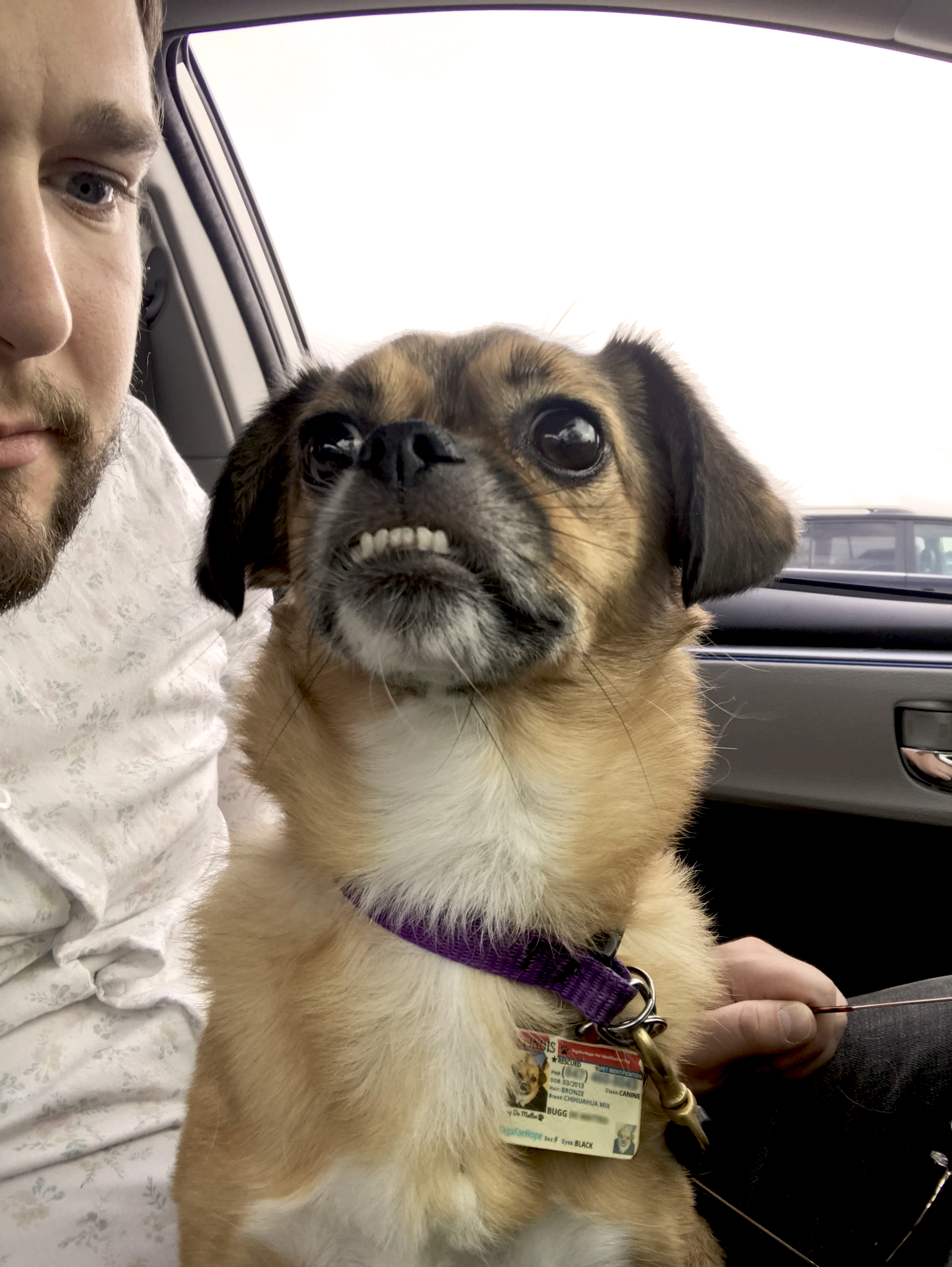 Kyle with small dog in car.