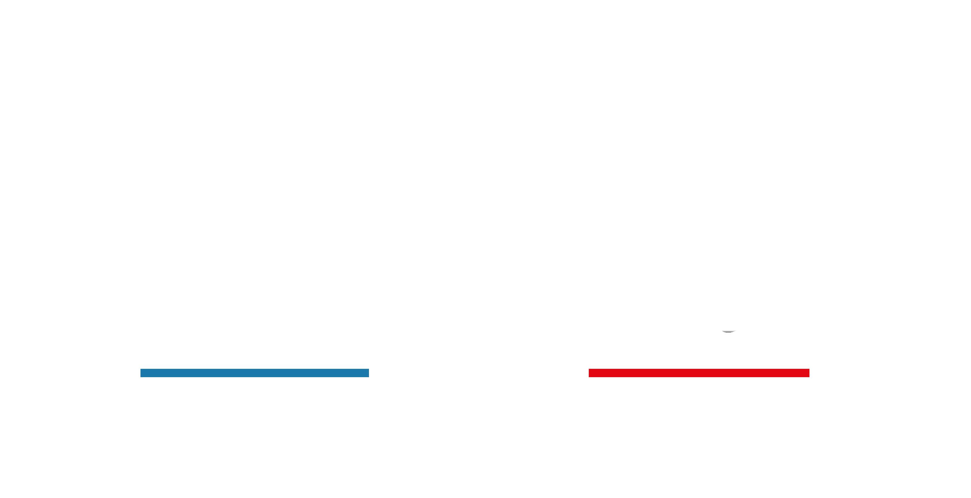 logo portraitiste de france 2021