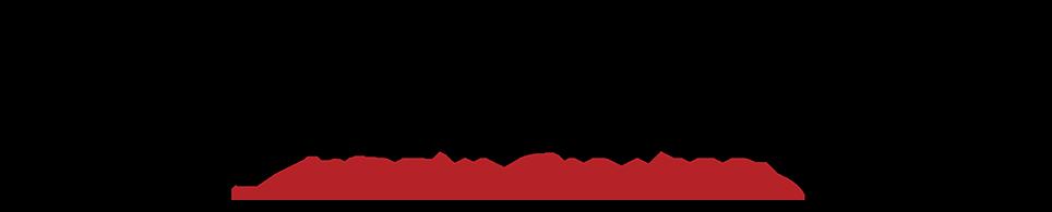 Tribeza Austin magazine logo