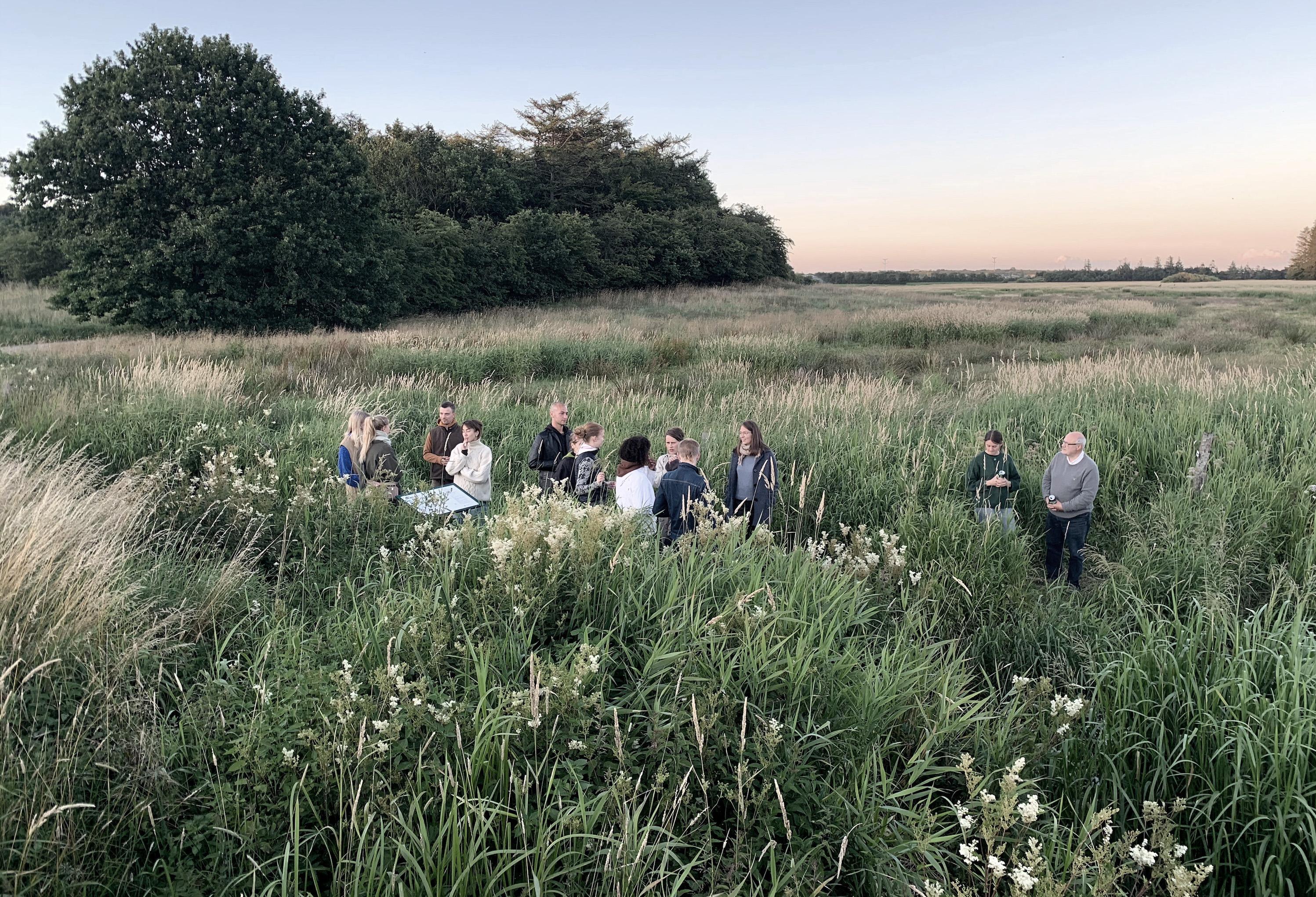 Billedet viser sommerskolens deltagere i højt græs langs Gram Å