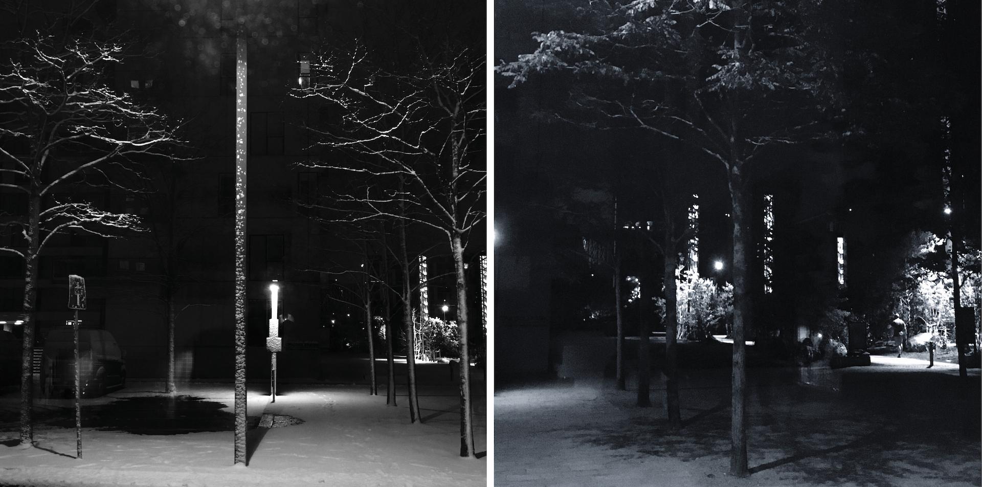 Billeder viser træer og lygtepæle i mørke