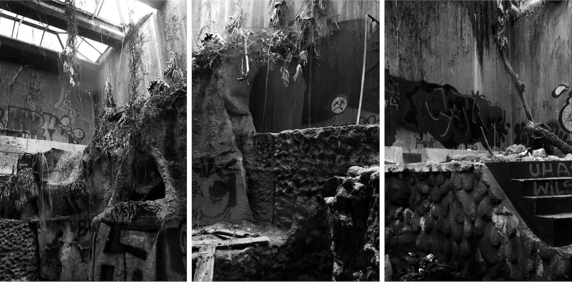 Billedet viser hajbassinet i det nedlagte Danmarks Akvarium