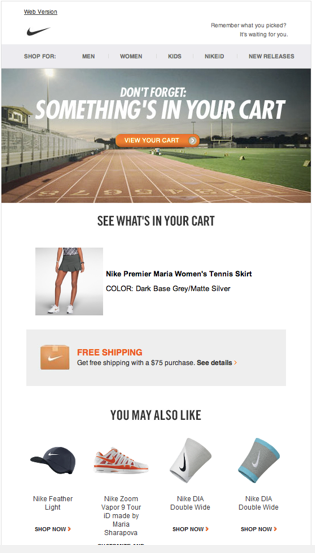 Email example from nike