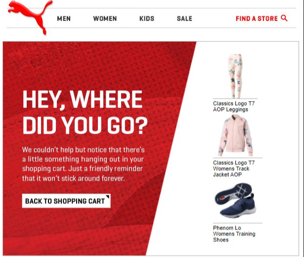 Email example from puma