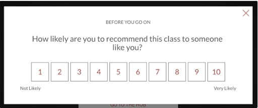Example of a net promoter score tool