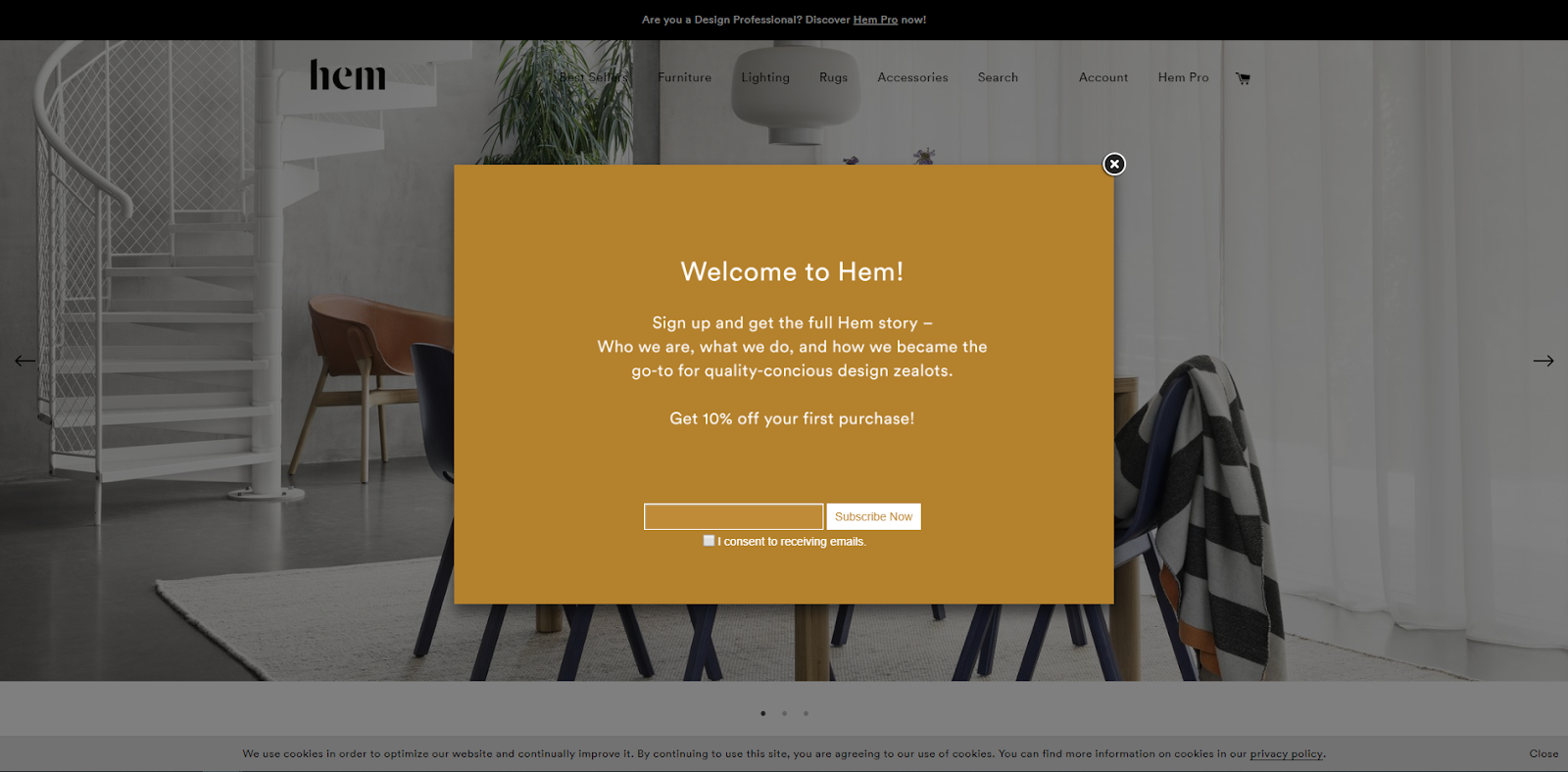 example of a Shopify email popup from Hem