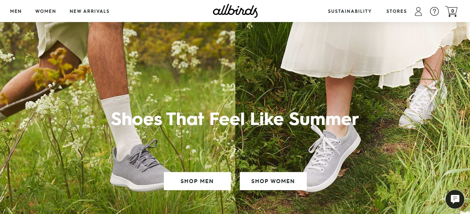 example of above the fold content from allbirds