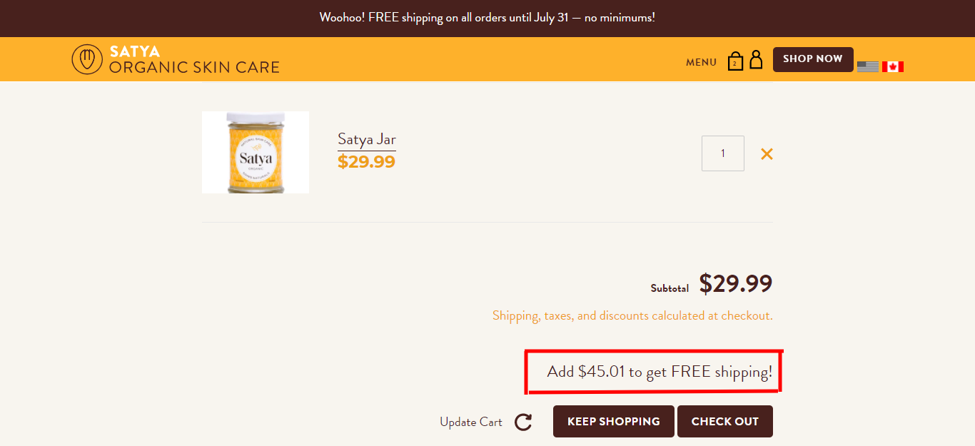 using free shipping to boost ecommerce ROAS
