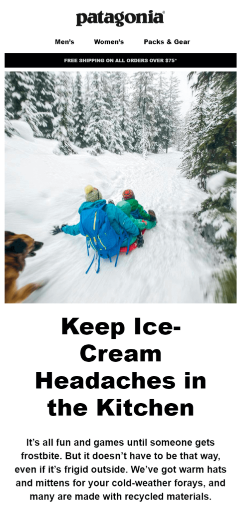 promotional drip email campaign by Patagonia