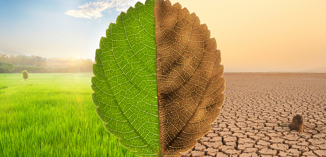 Our Climate Change Solutions Classification System