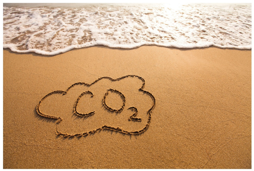 Analogy between CO2 avoidance and dieting