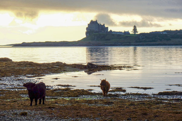 Explore the beautiful Isle of Mull from Pennygate Lodge