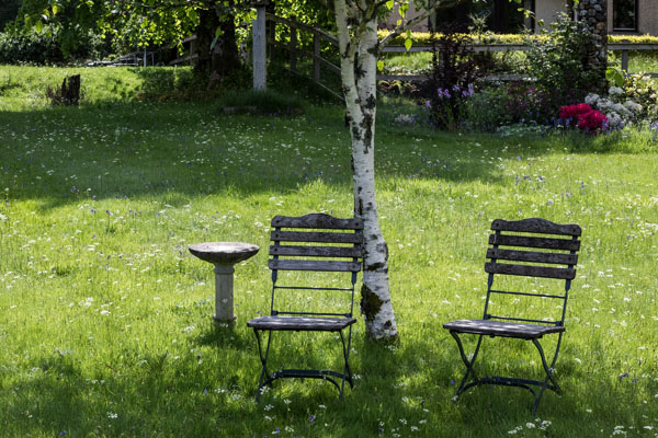 Relax in the developing gardens at Pennygate Lodge guesthouse at Craignure on Mull