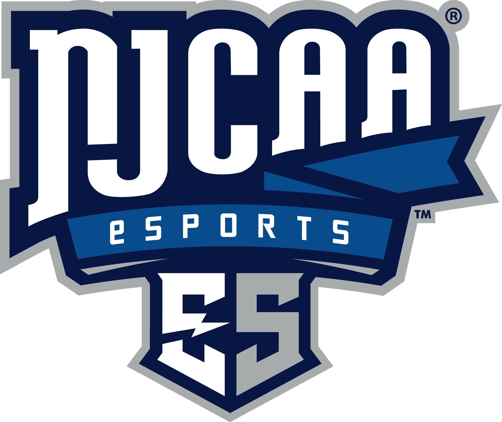 NAECAD Partner - National Junior College Athletic Association Esports