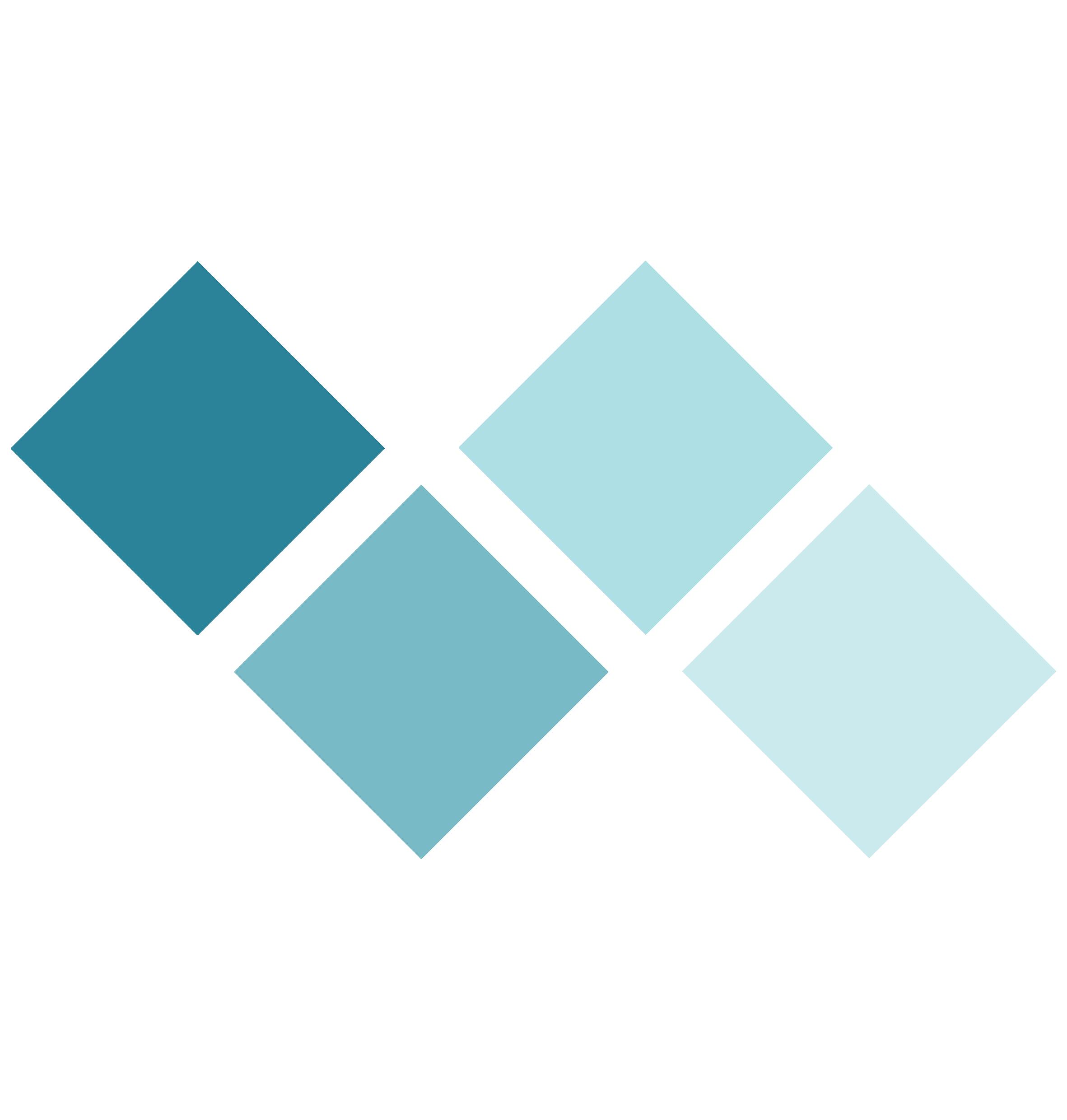 Audit trail icon