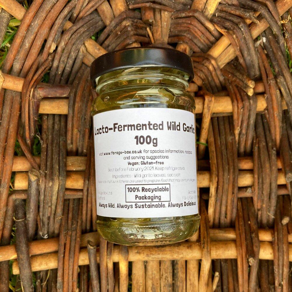 Lacto-Fermented Wild Garlic