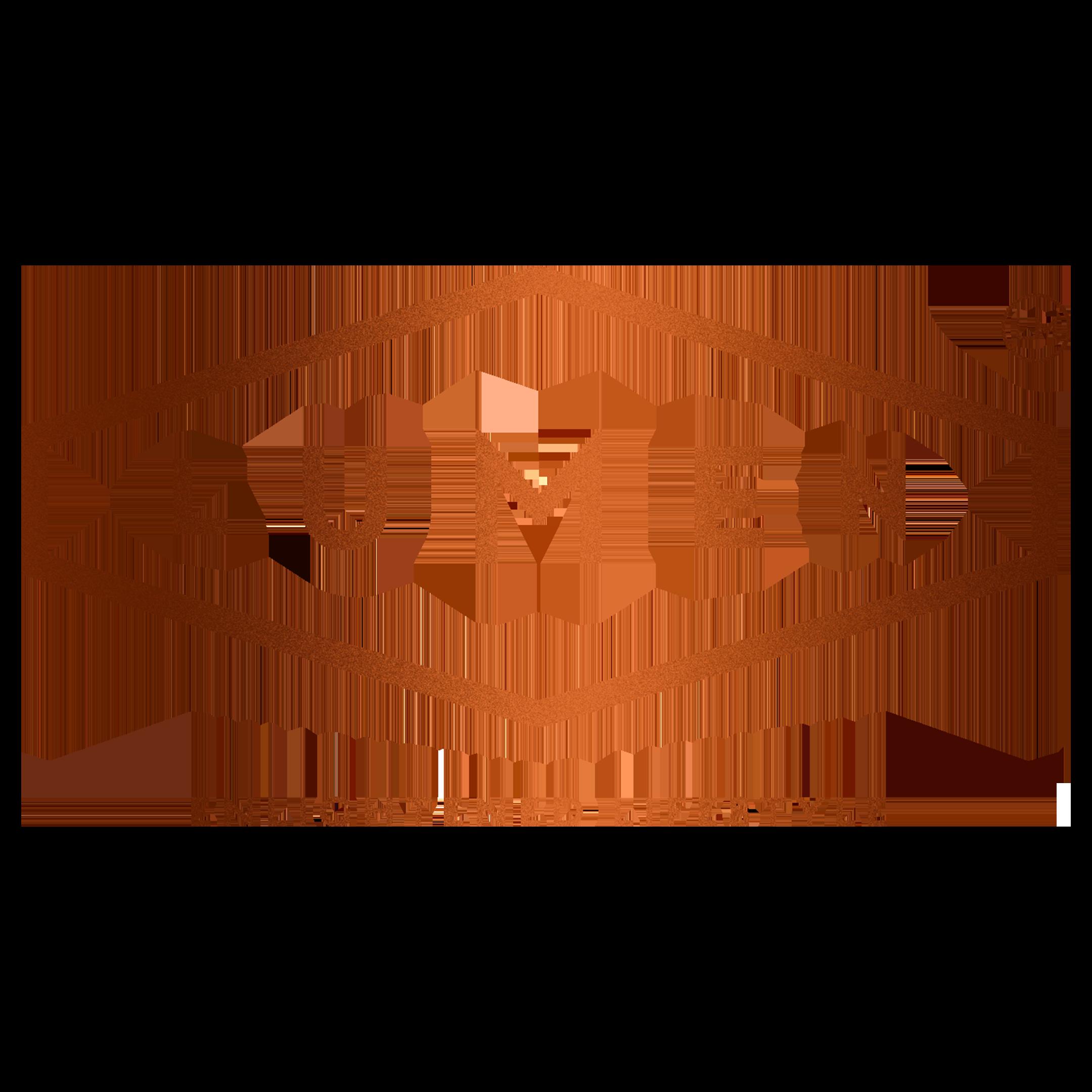 Lumen of Lewes Logo
