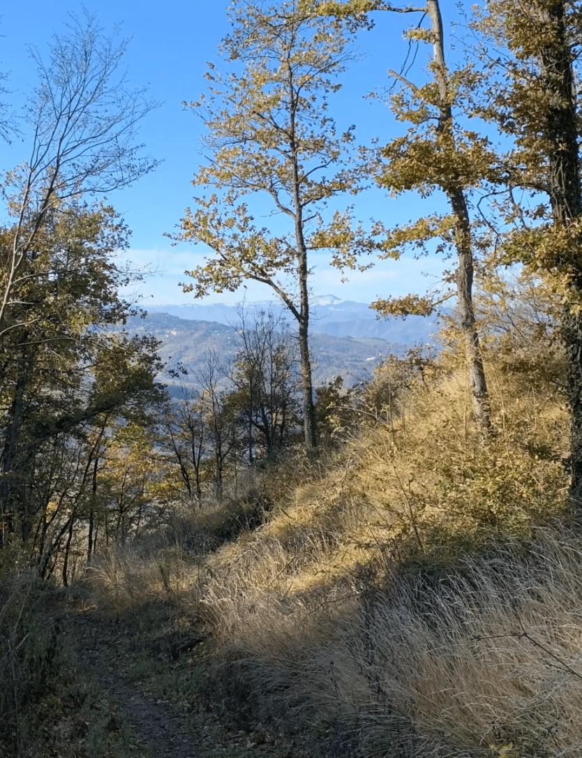 Il sentiero si trova esattamente sulla Linea Gotica. È il più naturale dei trails, breve, divertente e variegato, soprattutto nel finale su placche di roccia. Adatto anche ai meno esperti.