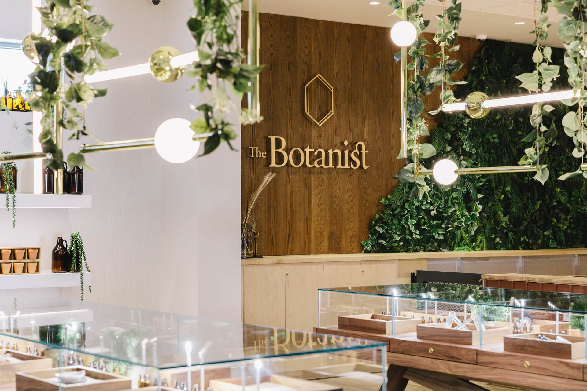 The Botanist Worchester MA by Little Giant