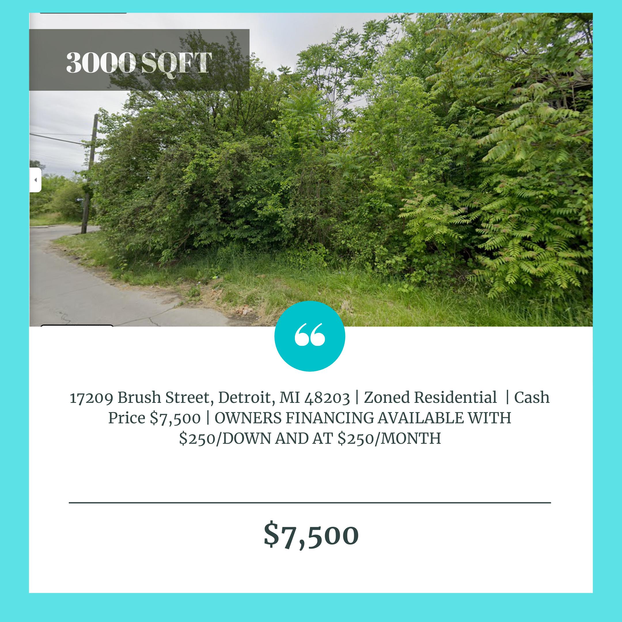 17209 Brush Street, Detroit, MI 48203